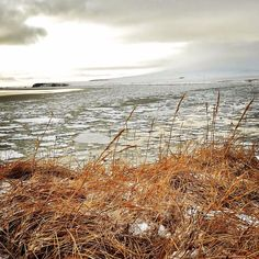 Toksook Bay, Alaska - January 1, 2016 (photo by Jimmie Lincoln)