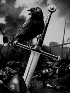 This is entry #79 by emgras in a crowdsourcing contest Gustave Dore : Crow in a battlefield - Illustration for $200.00 posted on Freelancer!