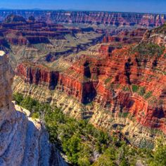 Grand Canyon's North Rim! So awesome ... would love to see it again. Maybe this time in winter.
