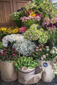 Pojeng kukkakauppa Kalamajassa oli rakkautta ensi silmäyksellä.