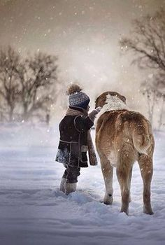 Winter Snow | It's good to have a friend to share a day like this |