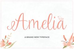 Amelia Script has long been one of our favorite script fonts available. Normally priced at $12, this beautiful typeface can now be yours for just $1. But hurry this offer is only available for just one month. This awesome script also comes with a set of 28 stunning ornaments, which can be accessed on any program as well. Get a full commercial license included as always.