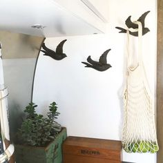 At West End Bird Hooks