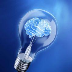 Photo about Brain in a bulb - idea concept. Image of design, graphic, imagination - 19381569 Bulb Photography, B Rain, Garden Bulbs, Spring Bulbs, Creative Pictures, Bulb Flowers, Filmmaking, Light Bulb, Christmas Bulbs