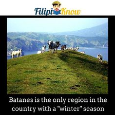 """""""Come to where the flavor is - Come to Marlboro country"""". Racu-A-Payaman, in Mahatao, Batanes a. Marlboro country of the Philippines Philippines Cities, Visit Philippines, Philippines Culture, Philippine Holidays, Batanes, Tourist Spots, Travel And Leisure, World Heritage Sites"""
