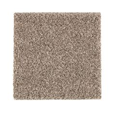 PetProof Carpet Sample - Maisie II - Color Taupe Essence Texture 8 in. x 8 - The Home Depot PetProof Carpet Sample – Maisie II – Color