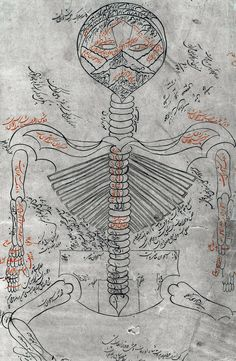 Skeleton system. From  Canon of Medicine (pinterest.com/pin/287386019945013982) by Avicenna (pinterest.com/pin/287386019948208872).