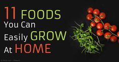 You can #Grow vegetables in containers, and some of the easiest ones to grow include cherry #Tomatoes, #Cucumbers, #Carrots, #Chard, #Kale, and #Herbs.   http://articles.mercola.com/sites/articles/archive/2015/04/20/11-easy-to-grow-vegetables.aspx?utm_content=bufferd7ff4&utm_medium=social&utm_source=pinterest.com&utm_campaign=buffer…