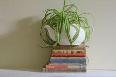 #decoracion #manualidades Decora con una tetera y algunos libros