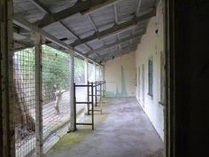 Veranda of derelict army bungalows in Sek Kong
