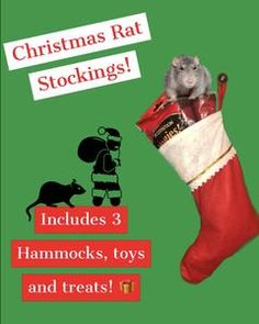 All Hammocks Handmade & Shipped from California Free 5 - 7 Day Shipping Included on All Orders Rat Harness, Rat Care, Rat Hammock, Cute Rats, Christmas Stockings, Your Pet, The Unit, Beds, Hammocks