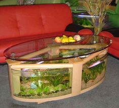 Aquarium Furniture: Creative Coffee Table Aquarium...this would drive my cats nuts.  Must have!  LOL!!