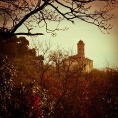 Montefollonico,Siena