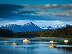 12 of the Best National Park Beaches >> Glacier Bay National Park and Preserve, Alaska.