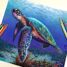 Junge Meisterin begeistert: Hyperreales mit Bunt- und Bleistift