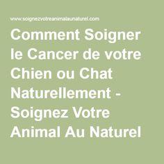 Comment Soigner le Cancer de votre Chien ou Chat Naturellement - Soignez Votre Animal Au Naturel