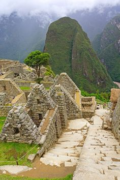 Putukusi view from Machu Picchu stairway / Peru (by Andrey Sulitskiy).