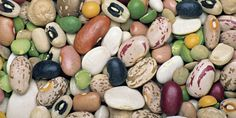 Pulses include dry peas, beans, chickpeas, and lentils.