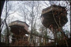 Historic Banning Mills -- stay overnight in treehouse adventure, ziplines, tours, birds of prey shows
