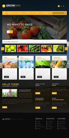template 49152 pest control responsive website template