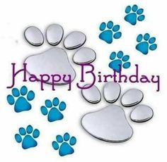 H. Bday!!! Dog Birthday Wishes, Happy Birthday Words, Birthday Prayer, Happy Birthday Baby, Birthday Blessings, Birthday Posts, Animal Birthday, Birthday Messages, Birthday Images