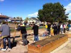 Ever thought about building a community garden but not sure where to start?  Our Master Gardeners have lined out all the steps for you here.