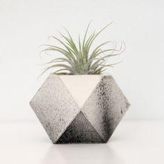 Concrete planter by Traci Yau