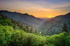1. Great Smoky Mountains, North Carolina and Tennessee | 15 Beautiful National Parks You Need To Explore