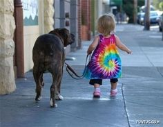 A dog and a diaper waddle. Yep.