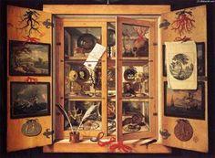 Domenico-Remps-Gabinete de curiosidades