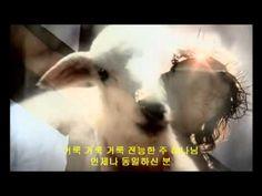 죽임당한 그 어린양 - Revelation song Korean version
