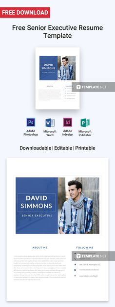 Free Designer Resume Free Resume Templates Pinterest - executive resume templates word