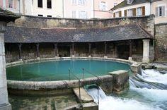 La fosse Dionne est une source exsurgente située dans le centre-ville de Tonnerre (département de l'Yonne). Elle est alimentée par les infiltrations des précipitations  issues du plateau calcaire avoisinant. La fosse Dionne est remarquable par son débit (en moyenne 300 litres par seconde) et la taille de son réseau hydrogéologique qui s'étend jusqu'à plus de 40 km.  Sa présence est à l'origine de la création de la ville de Tonnerre. Un lavoir élaboré a été aménagé autour de la source au…