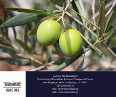 #extra_virgin #olive_oil #savouidakis_olive_oils Olive Oils, Fruit, Olive Oil