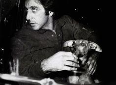 Al Pacino and dachshund