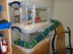 2-story bin hedgehog cage