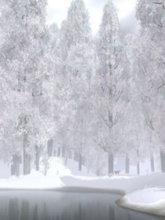Social Wardrobe: Fashion Bloggers Trends: White Winter