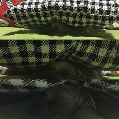あら?アンジーがいないと思ったら...こんな所に😀偶然が重なって、こんなことになっちゃたんだろうけど...このまま寝てしまってました😂🙌🙌分かりにくいけど、クッションの下でウトウト中です😍💕💕 . #ヨーキー#ヨーキー部#ヨークシャーテリア#ヨークシャテリア#ヨーキースタグラム#わんこ#いぬ#愛犬#わんこlove#小型犬#ワンコ#犬バカ部#ふわもこ部#west_dog_japan#east_dog_japan#all_dog_japan#yorkie#yorkies#cutedog#pet#pets#pretty#puppy#yorkielove#inumatome#犬#dog#yorkshireterrier#lovedogs#YORKIESOFINSTAGRAM