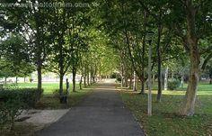 Jardim de Vanicelos