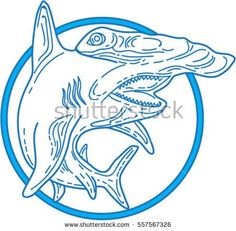 Mono line style illustration of a hammerhead shark set inside circle on isolated white background.  #hammerheadshark #monoline #illustration
