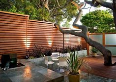 Want garden fence ideas with garden art ideas? These fence decorations are great ways to dress up your outdoor space. If you'd like specific ideas for privacy fences, I've got a collection of 70 Gorgeous Backyard Privacy Fence Decor Ideas on . Outdoor Privacy, Backyard Privacy, Backyard Fences, Garden Fencing, Garden Beds, Garden Privacy, Patio Fence, Garden Walls, Tree Garden