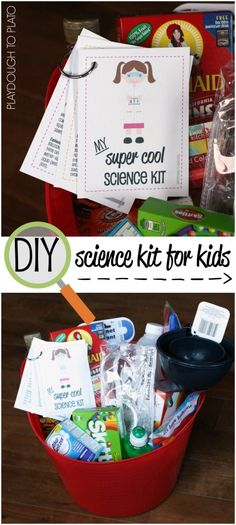 Awesome DIY Science Kit for Kids. Insanely cool gift for kids or home science lab. And most of the supplies from from the dolllar store!!