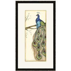 Rebecca's Peacock Framed Wall Art ($111) ❤ liked on Polyvore featuring home, home decor, wall art, framed wall art, home decorators collection, tree branch wall art, peacock home decor and peacock wall art