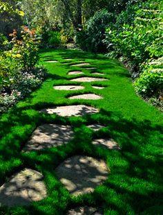 Con estas 8 ideas de caminos para el jardín que hemos seleccionado podréis transformar y renovar vuestro jardín radicalmente. Pocas intervenciones hay en el jardín tan fáciles y con tanta trascende…