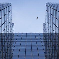 Project Risk Management, Skyscraper, Multi Story Building, Projects, Log Projects, Skyscrapers