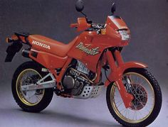 Honda NX650 Dominator. One of THE BEST bikes Honda ever made. Sadly not in production anymore...