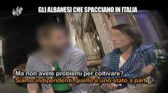 Le Iene, prima puntata 17 settembre 2014 live: il ritorno di Ilary Blasi e Teo Mammucari | Televisionando