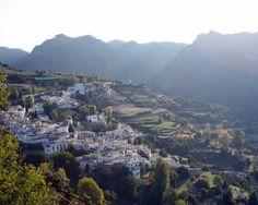 """#Granada - #Busquístar - Vista general 36º 56' 11"""" -3º 17' 58""""  Busquístar se llega tras atravesar unos espléndidos castañares. Las casas de la zona conservan el típico techo de «launa» y en las afueras del pueblo hay restos de una mezquita árabe desde donde se ve una amplia panorámica de las localidades más próximas. La población de Busquístar es de poco más de 300 habitantes."""