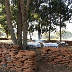 FRIDAY IS BRAAI DAY! Game Lodge, Game Reserve, Hotel Spa, How To Memorize Things, Wildlife, Environment, Friday, In This Moment