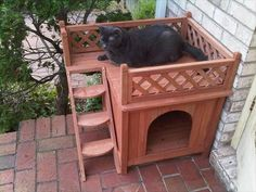 wooden pallet cat house | pallets designs Outdoor Cat House Diy Gorgeous Outdoor…